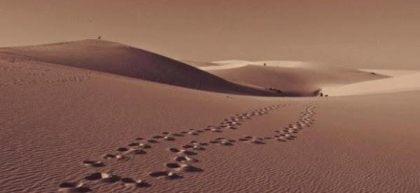 Cuaresma-camino-en-el-desierto-599x275